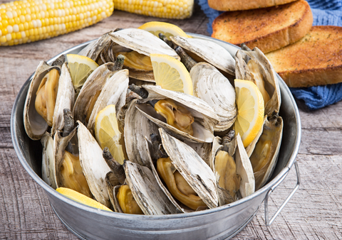 clams_dreamstime_xs_51045479